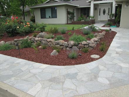 water drought tolerant garden