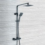 Synergy Square Black Thermostatic Shower