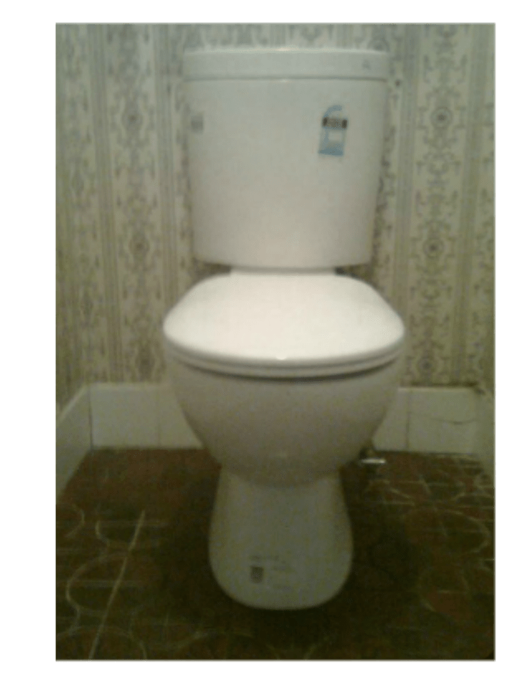 New toilet install by professional sunshine coast plumber