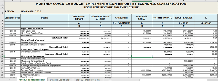 November 2020 Monthly Covid-19 Budget Implementation Report