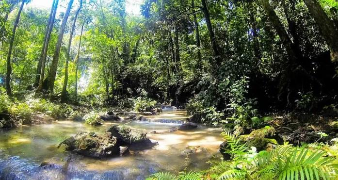Creek near Batlag falls