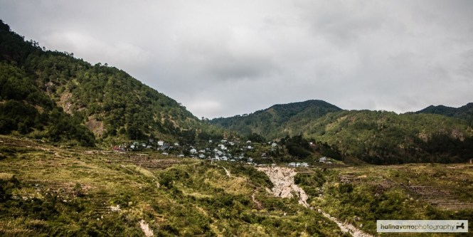 I didn't expect to find rice terraces here in Sagada. (Photo by Hali)