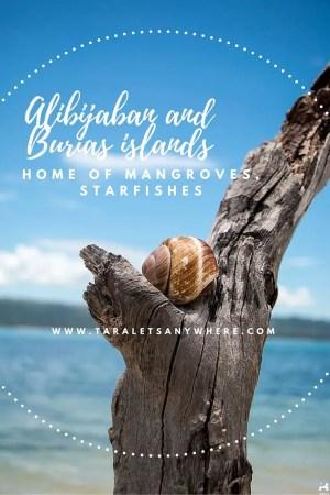 Alibijaban and Burias islands pinterest
