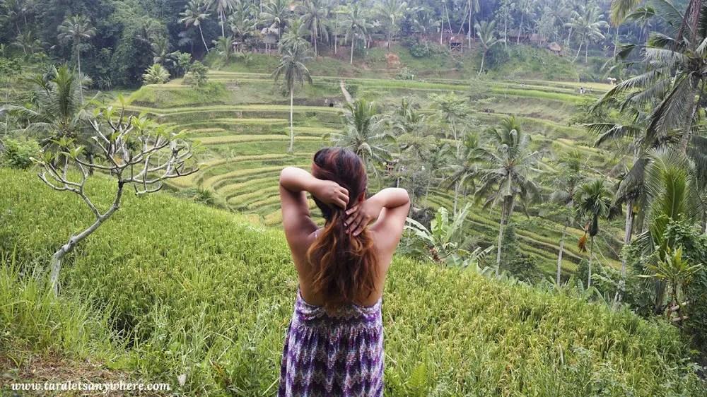 Tegallalang Rice Terraces.