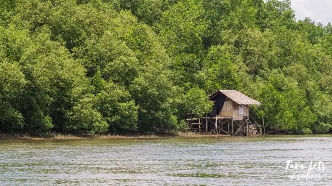 House on stilt in Siay wetlands