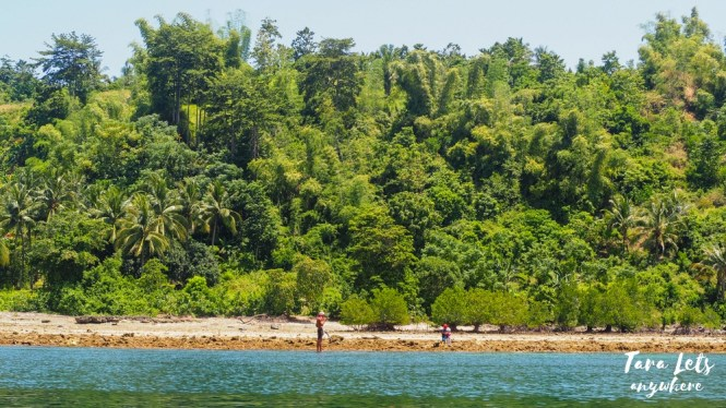 Random island in Once Islas