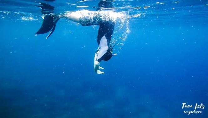 Hali's attempt at duck dive