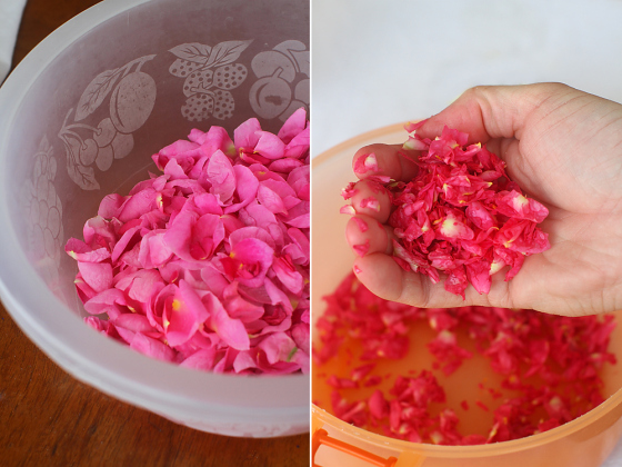 preparare-dulceata-de-trandafiri-1
