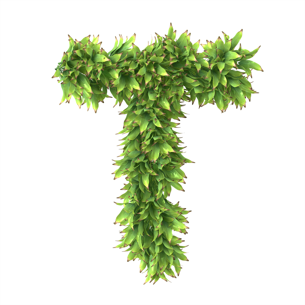 plant letter