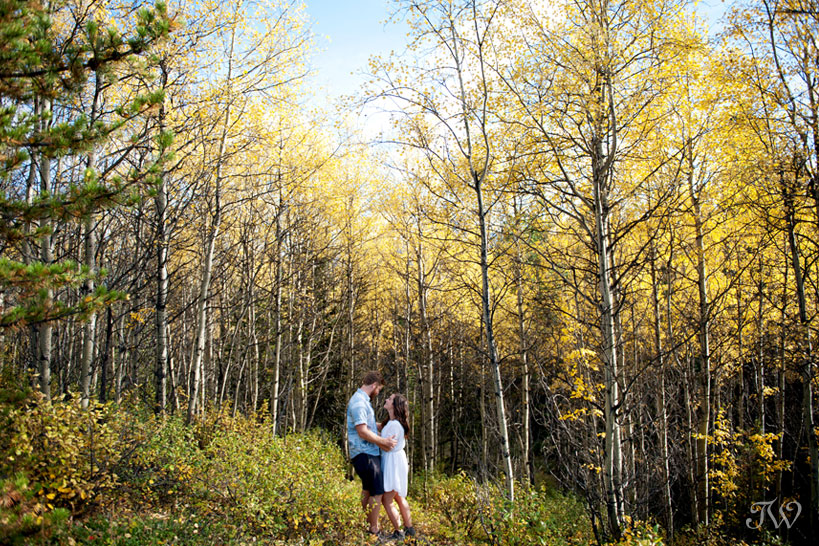 couple amongst the autumn leaves captured by Calgary wedding photographer Tara Whittaker