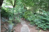 Native Plant Garden at Lodge