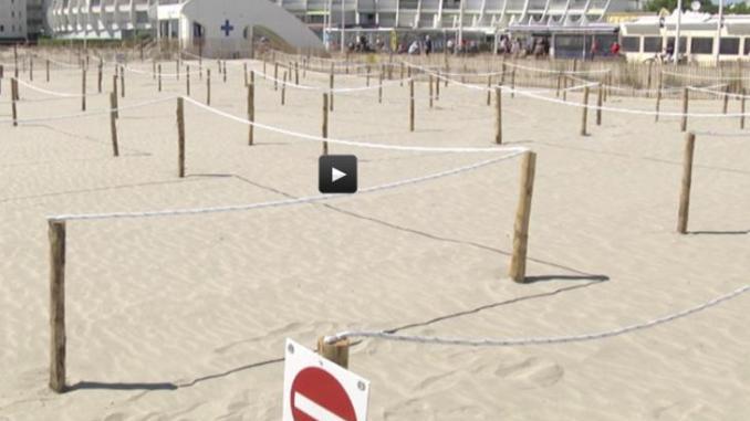 Déconfinement, à la Grande Motte la plage partagée