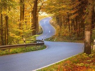 Conduire en automne : les bons conseils des policiers de Tarbes