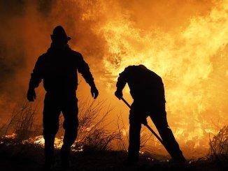 Des dizaines d'hectares brûlés dans un incendie au camp de Ger