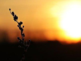 Météo Tarbes, du froid avant le retour d'un grand soleil