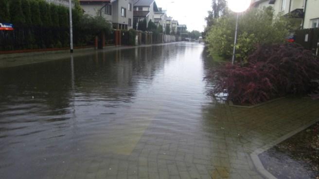 Potopienia na Zaciszu - Elsnerowie