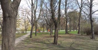 Park Wiecha05