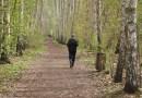 Napad z bronią na Bródnie, obława w lesie