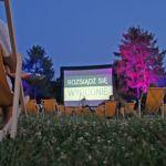 Kino w parku – pełen relaks [ZDJĘCIA]