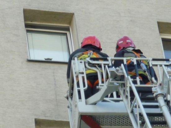 Strażacy ratują kota z 10. piętra bloku / fot. Straż Miejska