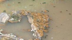 zanieczyszczenie kanalu Brodnowskiego4