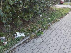 Śmietnik pod niestrzyżonym żywopłotem przy Toruńskiej / fot. targowek.info