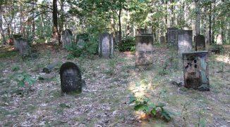cmentarz-zydowski-2016-1