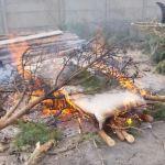 Czym palą w piecach i ogniskach na Zaciszu? Wszystkim