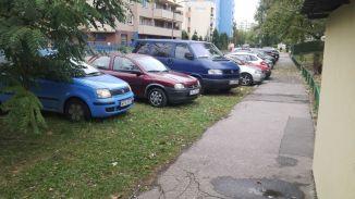 Szczepaika_pazdziernk1