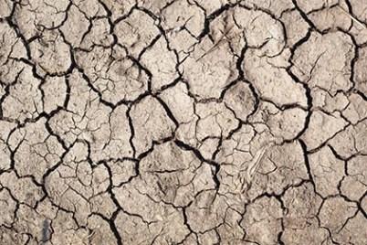 dry soil tar heel basement systems