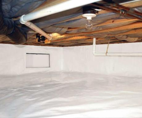 The #1 Way to Rid Your Crawlspace of Bugs and Critters