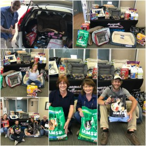 annual pet drive where we collected dry dog food, cat litter, small dog beds, Clorox, and other supplies throughout the month and then donated those items in June to the Stokes County Animal Shelter