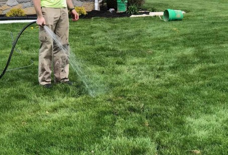 Drought and your lawn