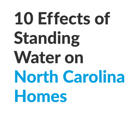 10 Effects of Standing Water on North Carolina Homes