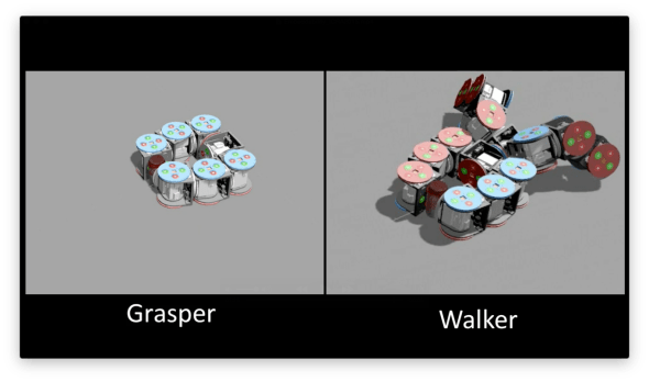 embedding-walker-grasper