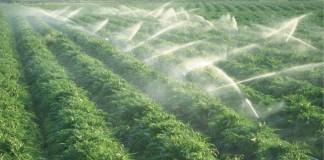 Çiftçinin elektrik borcu tarım desteğinden tahsil edilecek