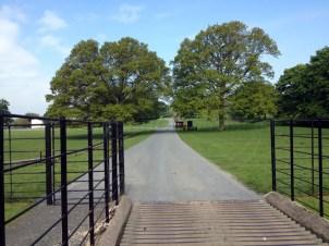 Private Estate Road Tarmacing