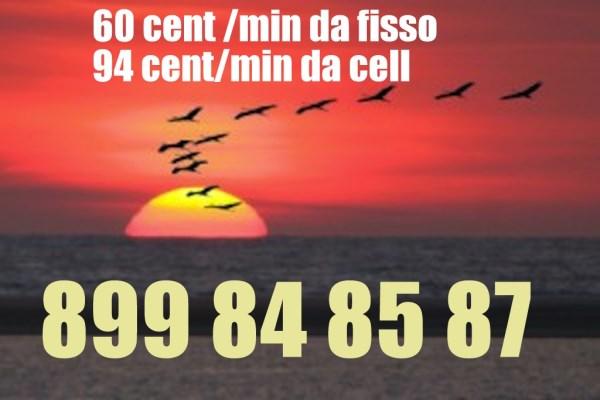 899-84-85-87-copia