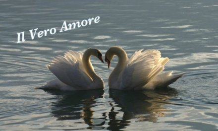 Il Vero Amore ….. pensiero di Thich Nhat Hanh..  Rendere un'altra persona felice è un'arte che si impara.