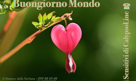 Buon Week End Bella Gente ..