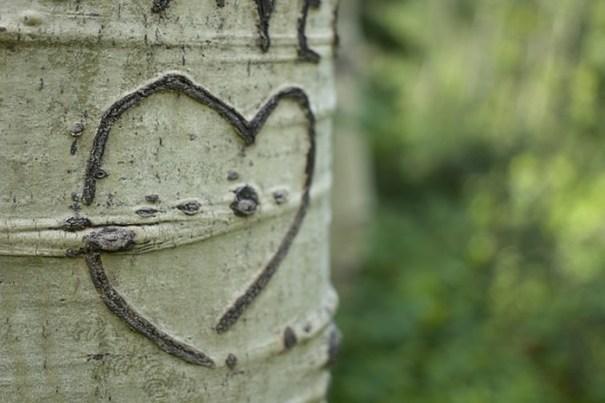 Retrouver son premier amour grâce au tarot