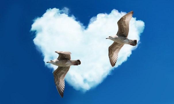 free tarot pour consultation voyance amoureuse