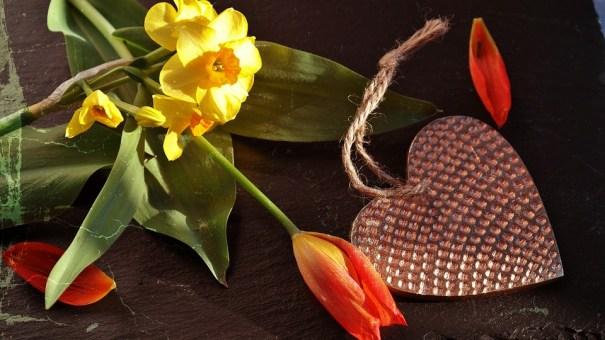 Tarot de marseille divinatoire avec un voyant de l'amour