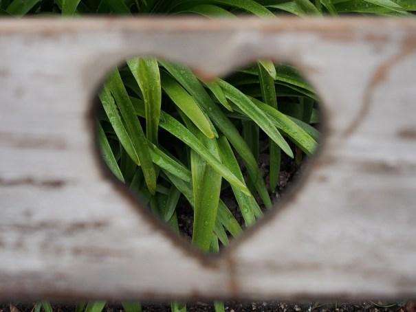 Tirer tarot amour