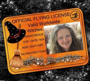 License to Fly - 2zxCQ-CFkC - print