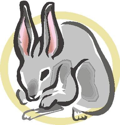 Conejo en el horóscopo chino