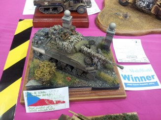 Tank - one of the IPMS winners