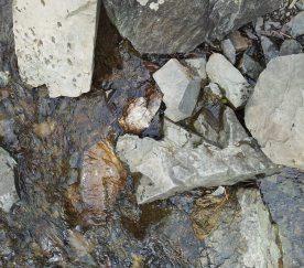 waterandrocks