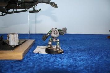 Telford IPMS 2012 (7)