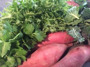 Frisee; Baby Celery; Brassica Salad; Sweet Potatoes